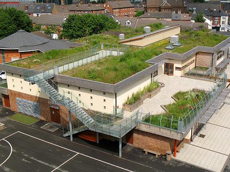 1 Sharrow School Green Roof 1