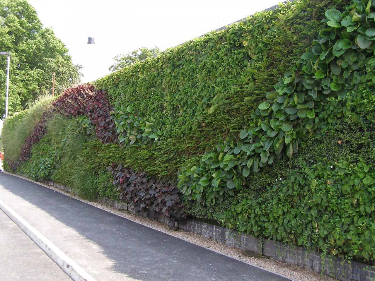 Green Walls Making Lewes