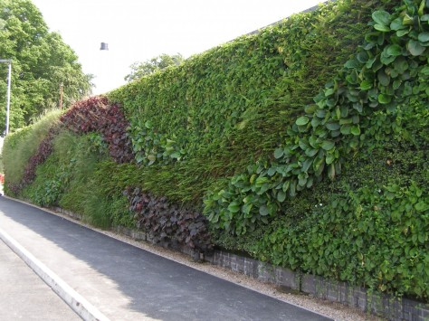 9 Vertical wall-garden